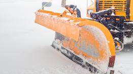 SnowIce Mgtmt_262 x 145px.jpg